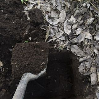 Manejo integrado del suelo