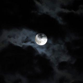 Balade Nocturne #1 - Les gens & les choses simples