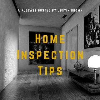 Why You Need a Mold Inspection