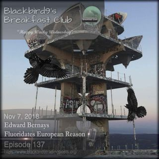 Edward Bernays Fluoridates European Reason- Blackbird9 Podcast