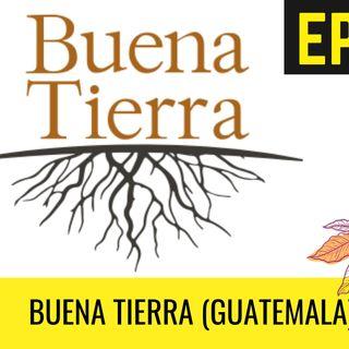 HAGAMOS CAFÉ - EP 22 | Buena Tierra (Guatemala) 🍒