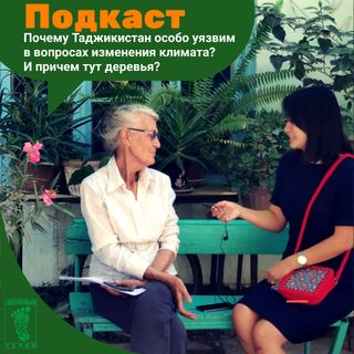 Почему Таджикистан уязвим к изменению климата? И причем тут деревья