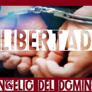 Libertad - Evangelio del 03/06/2018 - Domingo IX Tiempo Ordinario - Mc 2, 23-3,6