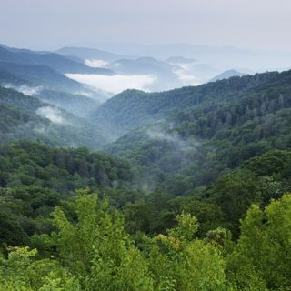 Around the World: Morning in Smoky Mountain