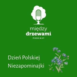 #ZostańWDomu: Dzień Polskiej Niezapominajki