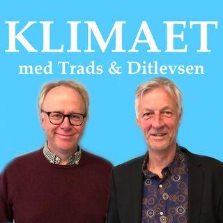 KLIMAET - med Trads & Ditlevsen