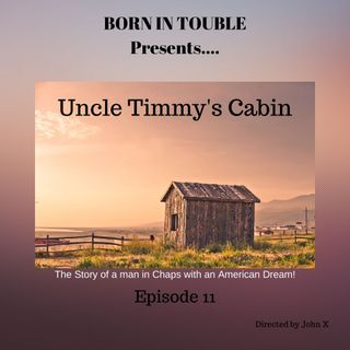 Uncle Timmy's Cabin