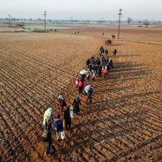 Didem Danis, Turkey - Migration management and asylum reception in Turkey