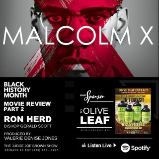 NETFLIX MALCOLM X :  MOVIE REVIEW :  PART 2 :  RON HERD AND BISHOP GERALD SCOTT