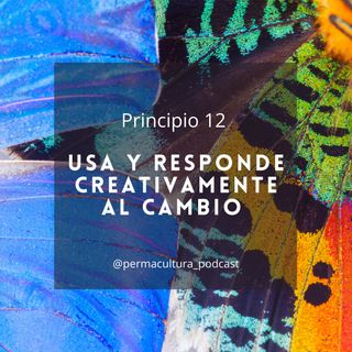 T1E17 - Principio 12 Usa y responde creativamente al cambio