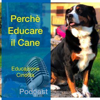 Perché Educare il Cane?