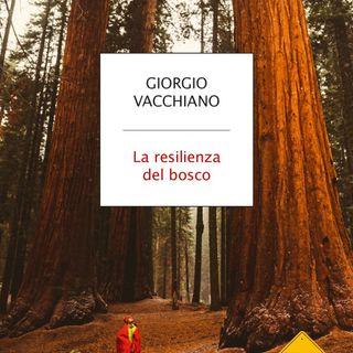 """Giorgio Vacchiano """"La resilienza del bosco"""""""