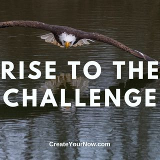 1865 Rise to the Challenge