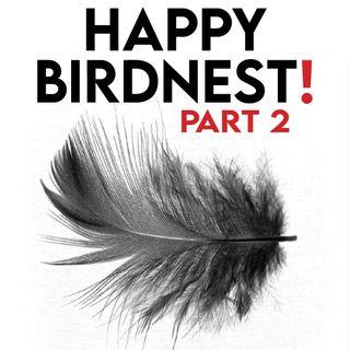 *HAPPY BIRDNEST* 1 YEAR PODCAST [Part Two : Night Flight]