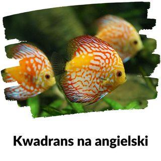 KNA: Lekcja 152 (akwarium)