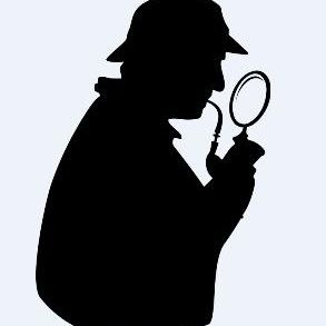 The Vibe Detective