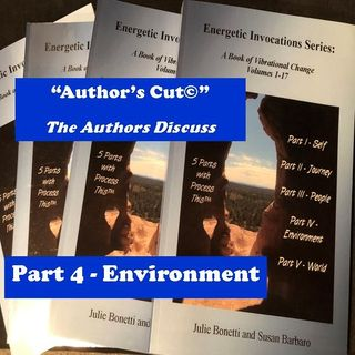 Energetic Invocations & Process This - The Author's Cut - 05 - Part 4 - Environment
