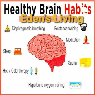 Healthy BRAIN habits