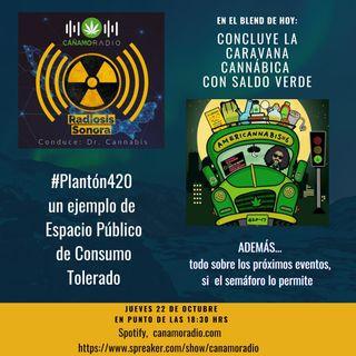 Radiosis Sonora Numero 12
