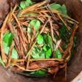 Inside the World of Ayahuasca and Iboga: The Love of Plant Medicine With Guest Matthew Butcher
