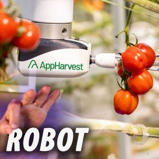 Granjas manejadas por ROBOTS | AppHarvest