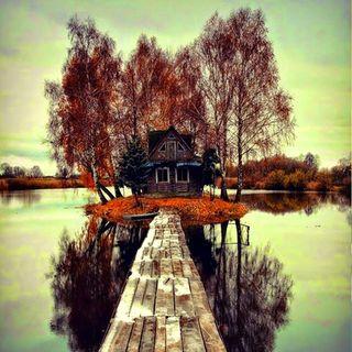 Reflexión: Puentes...