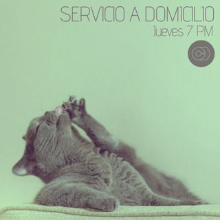 Servicio a domicilio #4