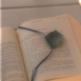 Tre poesie di Nazim Hikmet -3- Forse la mia ultima lettera a Mehmet - Letture nei giorni strani