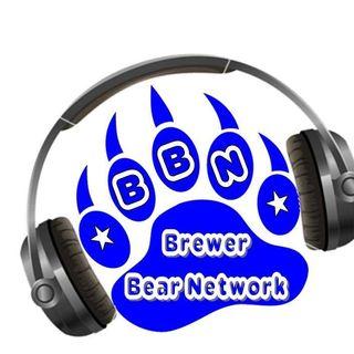 Brewer Bear Network