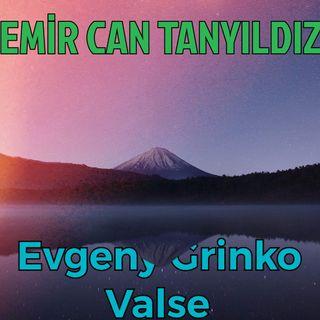 Evgeny Grinko-Valse