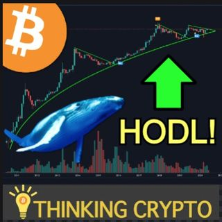 BITCOIN WHALE Population Near 2017 Levels!  - Capital One Bank Crypto Patent - Deloitte Survey Shows Global Crypto & Blockchain Adoption