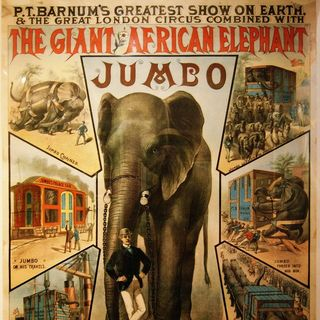 Un caffé con lo storico - Jumbo, un elefante in America