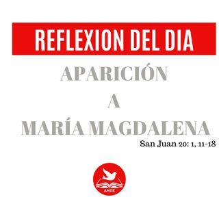 APARICION A MARIA MAGDALENA - (JUAN 20-1,11-18)
