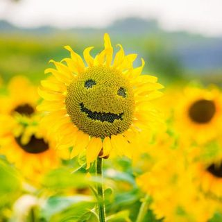 Becoming Positive Requires A Seed
