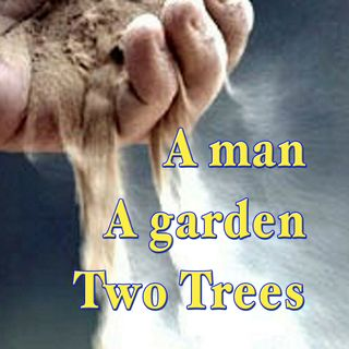 Man, A Garden, And Two Trees, Genesis 2:7-9 (OD13)