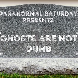 Ghosts are not dumb