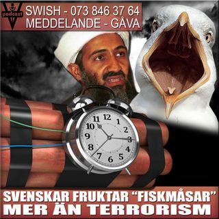"""SVENSKAR FRUKTAR """"FISKMÅSAR"""" MER ÄN TERRORISM"""