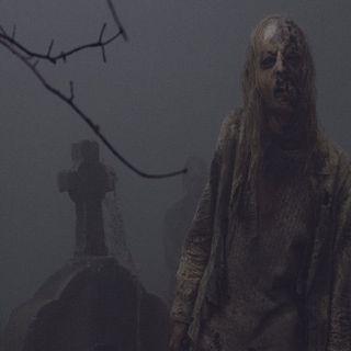Walking Dead: Evolution 107
