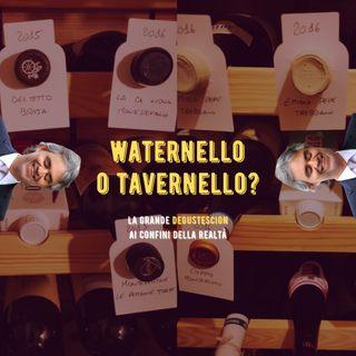 #13 - Waternello o Tavernello? La grande Degustescion ai Confini della Realtà