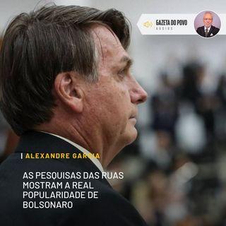 As pesquisas das ruas mostram a real popularidade de Bolsonaro