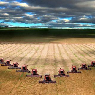 "2017-06-25 COJ #22 ""Become A Harvester"""