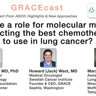 Is there a role for molecular markers predicting the best chemotherapy to use in lung cancer?