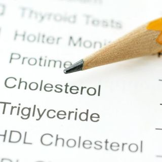 The Shocking Truth About Cholesterol & Why You Probably Don't Even Need To Test For It.