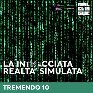 #10 - La intrecciata realtà simulata