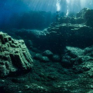 La fotografia subacquea di Claudio Palmisano porta il mare a Roma