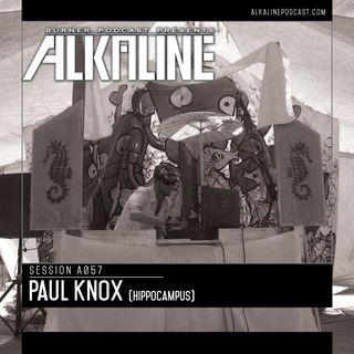 A057 - Paul Knox [Hippocampus]