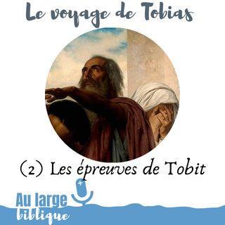 #159 Le voyage de Tobias (2) Les épreuves de Tobit