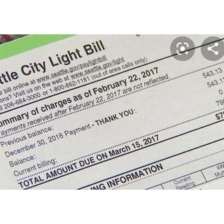 The Female Light Bill Solution: 619-768-2945