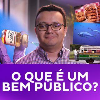 O que é um bem público?