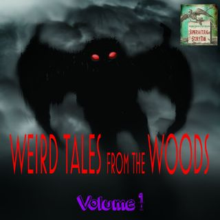 Weird Tales From The Woods | Volume 1 | Podcast E159